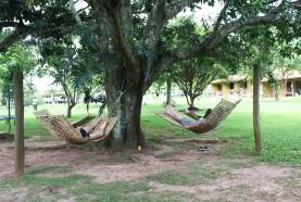 Descanso e contemplação