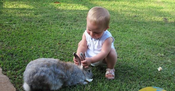 bebe-coelho-hotel-fazenda-brotas-jacauna