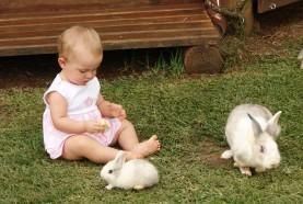 bebe-coelhos-hotel-fazenda-brotas-jacauna