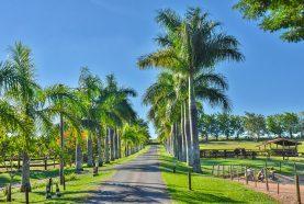 Hotel Fazenda Jacaúna | Brotas SP