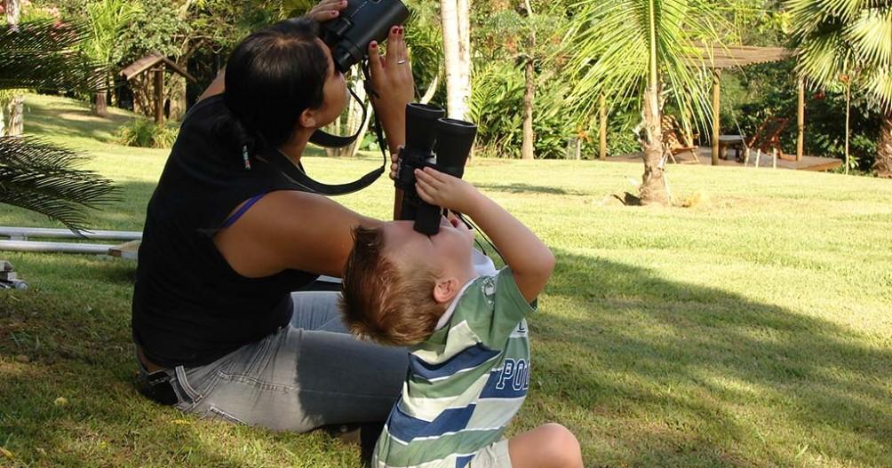 Birdwatching - Observe os pássaros
